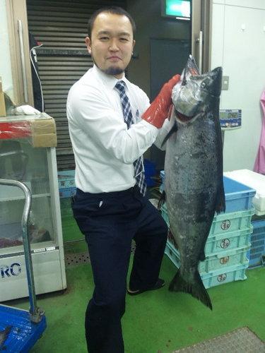 masunosuke14kg1.jpg